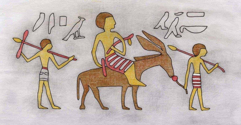 Große Ebenholz Esel Rohr