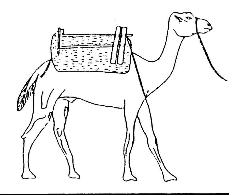 Ungewöhnlich Kamel In Der Wüste Malvorlagen Zeitgenössisch ...