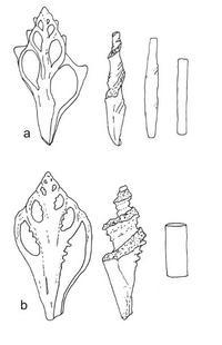 © Zeichnung E. Fischer; vgl. Gensheimer, 66 Abb. 2:1-2