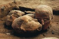 Mit Dank an ©  Laurent Dugué (Ausgrabungen in *Tell Aswad*, Leitung D. Stordeur, Mission El-Kowm-Mureybet Ministère affaires Etrangères Frankreich).