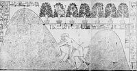 Aus: E. Naville, The Temple of Deir el Bahari, Bd. 3: Plates LVI-LXXXVI. End of Northern Half and Southern Half of the Middle Platform, London 1898, Pl. LXXIX